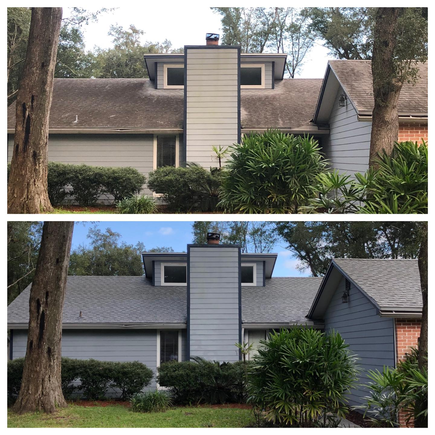 roof cleaning Palatka